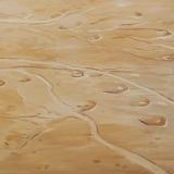 Palmyra, oil on canvas, 80x90cm - 2013